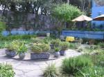 Courtyard at Casa Carly in San Miguel de allende, MX